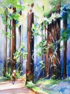 MaasNancy_WalkRedwoods